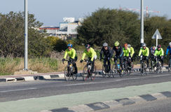 Group of cyclists on winter morning trains on intercity road Stock Image