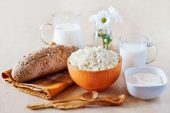 Group of dairy products Stock Photos