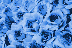Group of decorate rose. In soft style for background Royalty Free Stock Photos