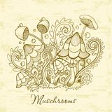 Group of decorative mushrooms. Cute mushrooms illustration, hand drawn collection. Royalty Free Illustration