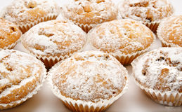 Group of delicious blueberry muffins Stock Photos