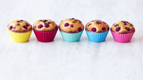 Group of delicious muffins placed on table Stock Image