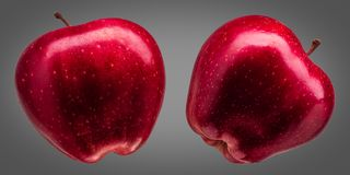 Group of delicious red apples on grey background Royalty Free Stock Photography