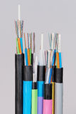 Group of 7 different fiber optic cable  ends with stripped jacket and exposed colored fibers Stock Photos