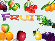 Fruit collge. Group of different fruit with text royalty free illustration