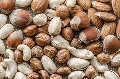 Group of different nuts Stock Image
