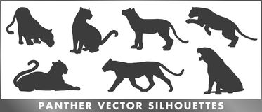 Panther group vector silouettes set vector illustration