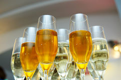 Group of different sort of white wine Royalty Free Stock Photos