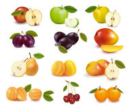 Group with different sorts of fruit. Stock Images
