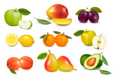 Group with different sorts of fruit. Royalty Free Stock Photo