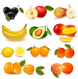 Group with different sorts of fruit. stock illustration