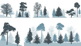 Group of different trees spruce, pine, oak, maple, etc. in forest or in park, isolated on white background. Vector illustration royalty free illustration