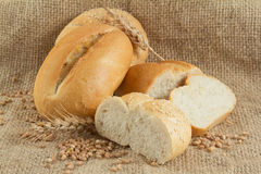 Group of different types of white bread Stock Photography