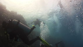 Group of Divers make to dive stock footage
