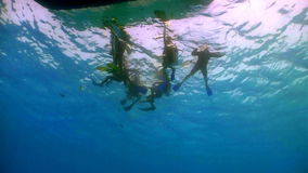Group of divers preparing to dive stock video footage