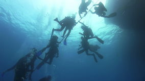 Group of Divers Preparing to Dive stock video