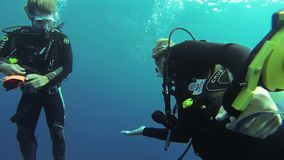 Group of divers swim underwater. Plunging on depth. Scubadiving. Bubbles. Blue water. Ocean stock video footage