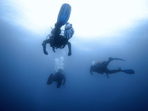Group of divers Underwater background. Royalty Free Stock Image
