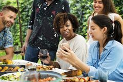 Group of diverse friends enjoying summer. Party together Royalty Free Stock Photography