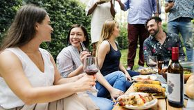 Group of diverse friends enjoying summer party together royalty free stock image