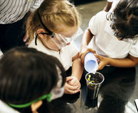 Group of diverse kindergarten students learning planting experiment in science laboratory class. Kindergarten students learning planting experiment in science stock photography