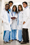Group of doctors Royalty Free Stock Image