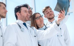 Group of doctors discussing the x-ray. The concept of teamwork stock image