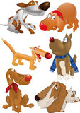 Group of dogs. Toy vertebrate hound Stock Image