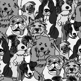 Group dogs seamless pattern gray scale Stock Image