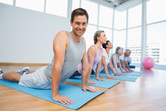 Group doing cobra pose in row at yoga class Royalty Free Stock Images
