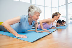Group doing cobra pose in row at yoga class Stock Images