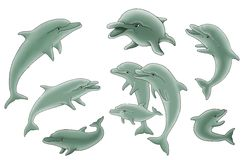 Group of dolphins illustration Stock Images