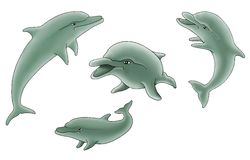 Group of dolphins illustration Royalty Free Stock Image