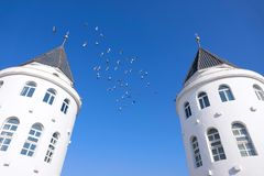 Dove and building. A group of dove fly over the roof of the European architecture Royalty Free Stock Photos