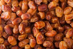 Background group dried dates Arabian delicacy Royalty Free Stock Photo