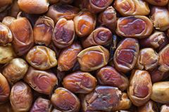 Background group dried dates Arabian delicacy Royalty Free Stock Images