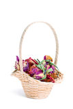 Group of dried flowers in basket. Group dried flowers basket dogrose Royalty Free Stock Photo