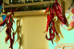 Group of dried red chili peppers on a string Stock Photos
