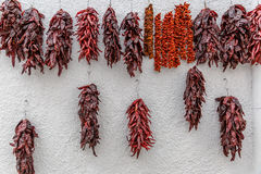 Group of dried red peppers hanging on a white wall stock images