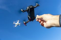 A Group Of Multiple Drones Fly Together Through The Air Against A Blue Sky Waiting To Be Fed. A group of drones fly through the air against a blue sky with a royalty free stock images