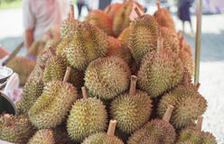 Group of durian at thai style market outdoor,king of fruite,traditional thai fruit Royalty Free Stock Photo