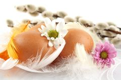 Group easter chicken eggs white tablecloth with feathers,flowers Royalty Free Stock Image