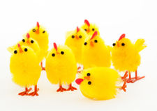 Group of easter chickens and the fallen leader Royalty Free Stock Images