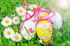 Group of Easter eggs with daisy on grass Royalty Free Stock Photo