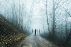 A group of eerie ghostly figures emerging from the fog on a spooky forest road in winter. With a high contrast photoshop edit stock image