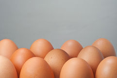 A group of egg Stock Images