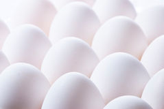 Group of eggs Stock Photo