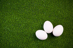 Group of eggs Royalty Free Stock Images