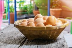 Group of eggs in a bamboo basket. Are prepared for cooking Royalty Free Stock Photography