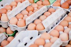 Group of eggs in carton box closeup market outdoor Stock Images